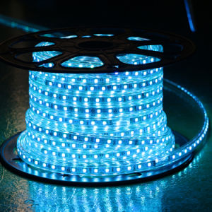 Yellow Color 60LEDs SMD5050 220V IP65 LED Rope Light pictures & photos