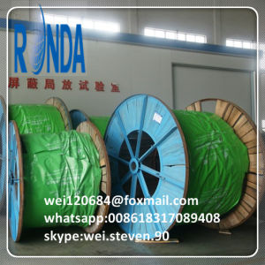 Underground Stranded Copper Core XLPE Insulated Electric Cable pictures & photos