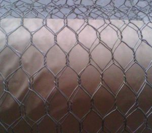 Chicken Wire Netting, Hexagonal Wire Mesh pictures & photos