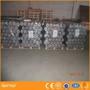 High Quality Hot Sale Galvanized Hexagonal Chicken Wire Mesh pictures & photos