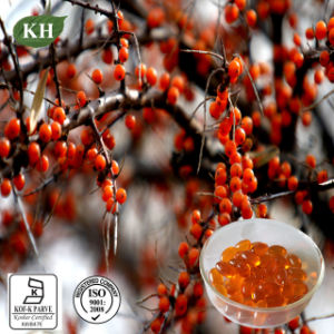 Sea Buckthorn Seed Oil, Berry Oil and Softgel pictures & photos