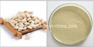 White Kidney Bean Extract Phaseolin 1%~2%, Weight Loss pictures & photos
