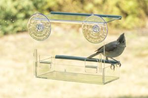 Good Quality No Mess Transparent Acrylic Bird Feeder pictures & photos