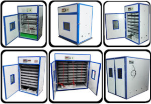 Hatching 1232 Eggs Digital Operated Industrial Egg Incubator Hatcher Machine pictures & photos