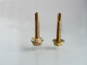 Screw/Hex Head with Rubber Washer Drilling Screw pictures & photos