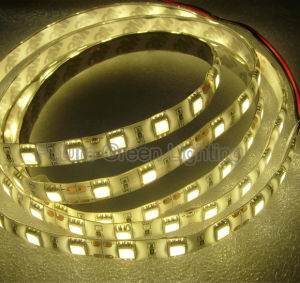 High Quality Best Price Waterproof Flexible LED Strip pictures & photos