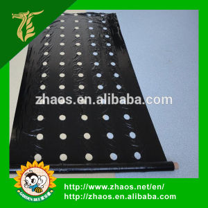 Popular Type Perforated Plastic Film for Agriculture pictures & photos