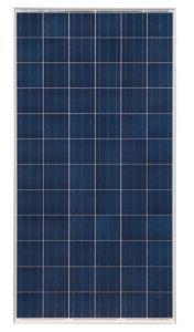 290W 156*156 Poly Silicon Solar Module pictures & photos