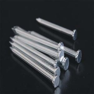 Galvanized Concrete Nails Common Steel Wire Nails pictures & photos
