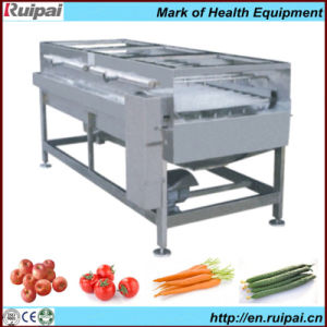 Excellent Vegetable and Fruit Washer Machine with ISO9001 pictures & photos
