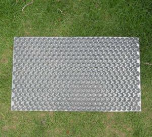 Paddy Seed Tray, Seed Tray, 434 Paddy Trays (AM-P01) pictures & photos