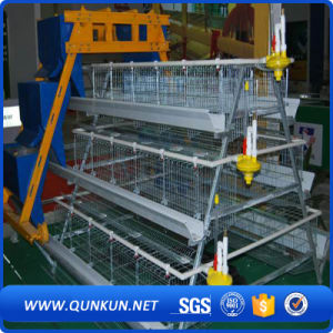Battery Chicken Layer Cage Sale for Pakistan Farm pictures & photos