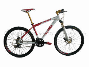 High Grade Suspension Mountain Bicycle (FP-MTB-A022) pictures & photos