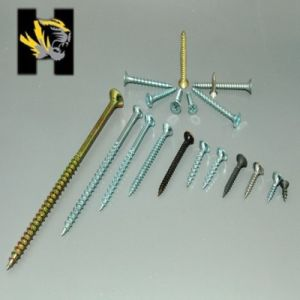 Screw/All Kinds of Drywall Screw pictures & photos