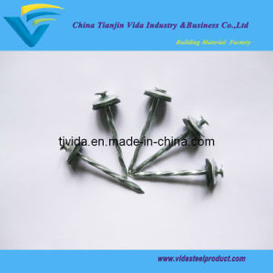 E. G. Roofing Screw Nails with Iron and Rubber Washer pictures & photos