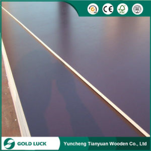 15mm Marine Construction Whole Hard Wood Core Board Film Faced Plywood pictures & photos