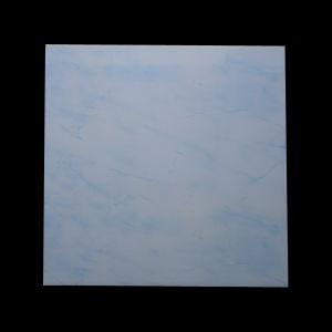 Plastic Panel (6027) pictures & photos
