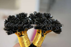 I-Tip Hair Extensions, 100% Remy Hair, Full Cuticles and Soft