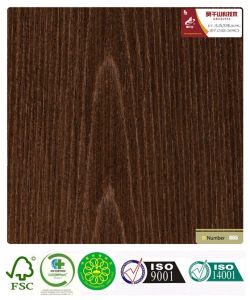 Black Oak Recomposed Wood Veneer