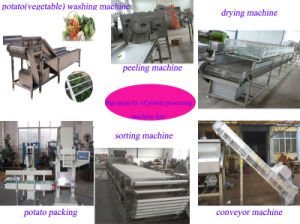 Vegetable Potato Carrot Washing Peeling Sorter Packing Processing Machine (WS) pictures & photos