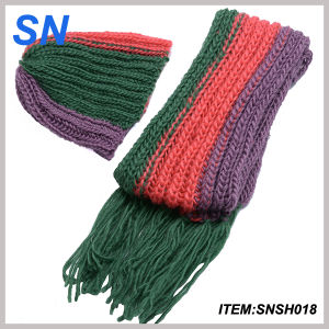 Fashion Hot Sell Winter Scarf Hat Set for Ladies pictures & photos