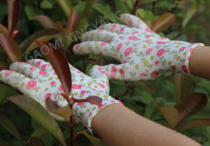 Garden Natrile Coated Glove Labor Protective Safety Work Gloves (N6005) pictures & photos