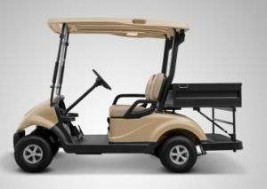 Porfessional Electric Utility Vehicle 2 Seater Electric Golf Cart with Cargo Box for Sale pictures & photos