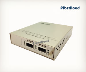 10g Media Converter XFP X 2, 10g Web Smart Oeo Converter