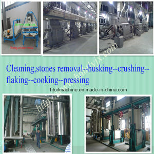 2015 Huatai Newest Design Cottonseed Oil Pretreatment and Pressing Machine / Edible Oil Mii Equipment Plant