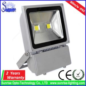 Epistar COB Lamp Outdoor Fixture 100W LED Floodlight