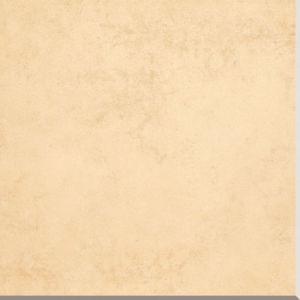 Rustic Porcelain Floor Tile with 600*600 Cm (T608) pictures & photos