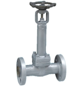 Bellows Seal Gate Valve / Bellow Seal Stainless Steel Gate Valve (Z41Y-600LB)