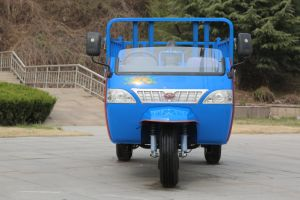 Diesel Waw Cargo Motorized Three Wheel Truck for Sale From China pictures & photos