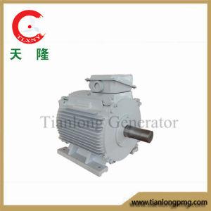 Ff-8kw/200rpm/DC240V Permanent Magnet Generator (PMG/PMA/Hydro)