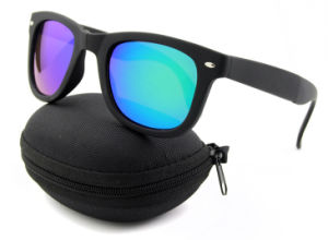 New Hot Sale Fashionable Plastic Folding Sunglasses with Case (4105)