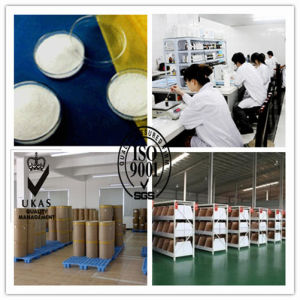 Pharma Raw Powder Adapalene with Competitive Price (106685-40-9) pictures & photos