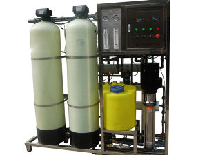 Factory Hot Sale 1t/H RO Water Filter/RO Water Purifier/ RO Water Treatment Plant pictures & photos