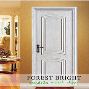 Simple Style Rasied Molding White Craftsman Door pictures & photos