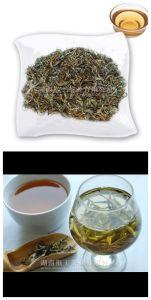 100% Natural Occident Beauty Tea Golden Jade