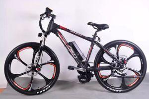 The Best Popular MID-Drive Mountain Electric Bike (OKM-703)