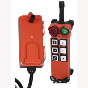 China Industrial Remote Control for Crane (F21-E1) pictures & photos