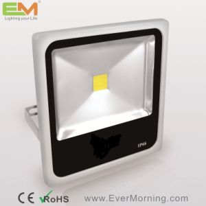 50W IP65 Waterproof CE Certified LED Floodlight