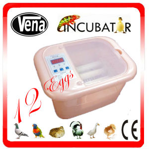 Automatic Incubator for Chicken Eggs Va-12 pictures & photos