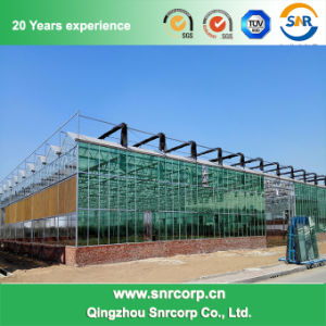Agriculture Greenhouse pictures & photos