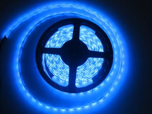 UL Two Years Warranty 12V 5050 60LEDs Waterproof LED Strip