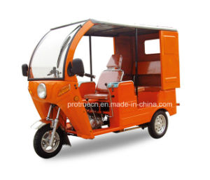 Mini Passenger Tricycle for 2 Person (DTR-13) pictures & photos