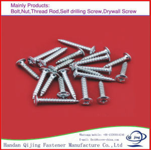 Professional Manufacturer Wrm Chipboard Screw, Galvanizing Self Tapping Screws, Self Drilling Concrete Screws pictures & photos