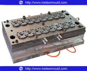 Pet Mould, Pet Preform Mold (MELEE MOULD-94) pictures & photos