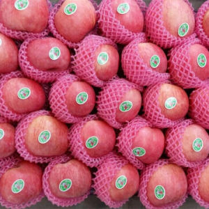 Fresh FUJI Apple Top Quality From China pictures & photos