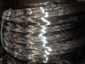 High Quanlity Stainless Steel Wire AISI304